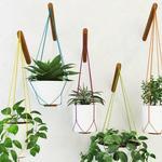 تحميل موديلات  630 Plant نبات