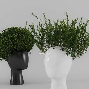 تحميل موديلات  646 Plant نبات