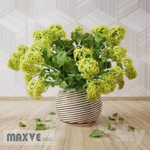 تحميل موديلات  652 Plant نبات