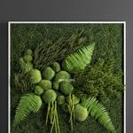 تحميل موديلات  658 Plant نبات