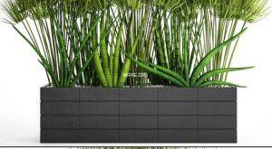 تحميل موديلات  671 Plant نبات