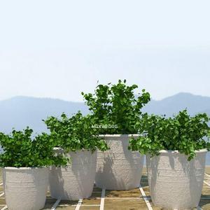 تحميل موديلات  42 Plant نبات
