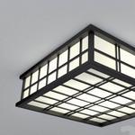 تحميل موديلات  179 ضوء السقف