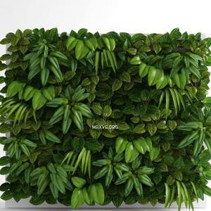 تحميل موديلات  61 Plant نبات
