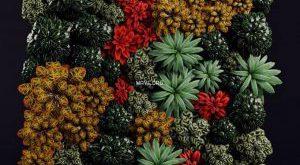 تحميل موديلات  73 Plant نبات