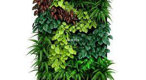 تحميل موديلات  92 Plant نبات