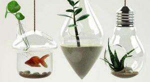 تحميل موديلات  95 Plant نبات