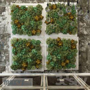 تحميل موديلات  98 Plant نبات