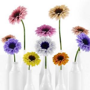 تحميل موديلات  128 Plant نبات
