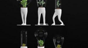 تحميل موديلات  134 Plant نبات