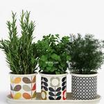 تحميل موديلات  142 Plant نبات