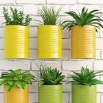 تحميل موديلات  155 Plant نبات