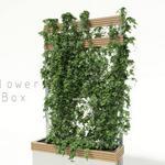 تحميل موديلات  168 Plant نبات