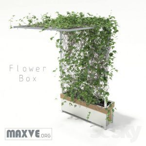 تحميل موديلات  169 Plant نبات
