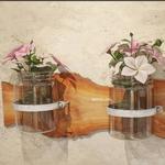 تحميل موديلات  182 Plant نبات