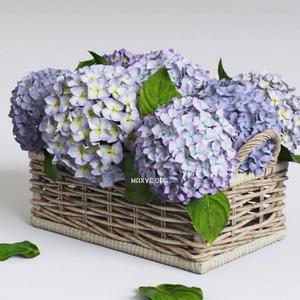 تحميل موديلات  201 Plant نبات