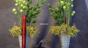 تحميل موديلات  217 Plant نبات