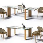تحميل موديلات  292 Table & chair- طاولة-وكرسي Calligaris TowerWood Bloom