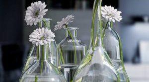 تحميل موديلات  236 Plant نبات
