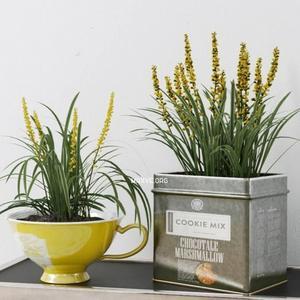 تحميل موديلات  279 Plant نبات