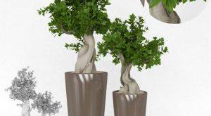 تحميل موديلات  284 Plant نبات