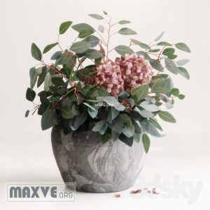 تحميل موديلات  292 Plant نبات