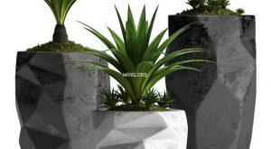 تحميل موديلات  307 Plant نبات