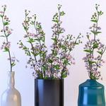 تحميل موديلات  308 Plant نبات