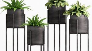 تحميل موديلات  309 Plant نبات