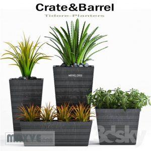 تحميل موديلات  318 Plant نبات