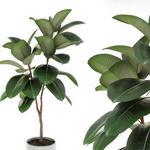 تحميل موديلات  327 Plant نبات