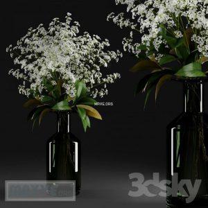 تحميل موديلات  338 Plant نبات