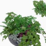 تحميل موديلات  348 Plant نبات