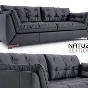 262 تحميل موديلات كنب Natuzzi Agostino B926