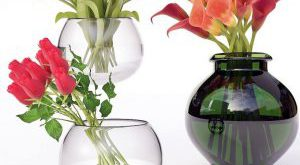 تحميل موديلات  365 Plant نبات