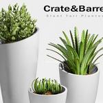 تحميل موديلات  368 Plant نبات
