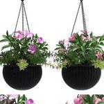 تحميل موديلات  375 Plant نبات