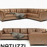 288 NaTUZZI كنب Natuzzi Editions