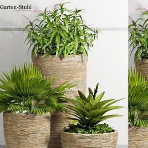 تحميل موديلات  409 Plant نبات