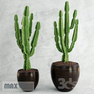 تحميل موديلات  410 Plant نبات