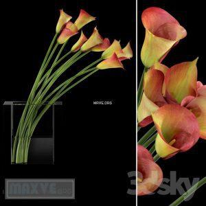 تحميل موديلات  413 Plant نبات