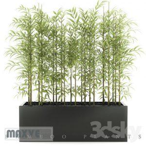 تحميل موديلات  417 Plant نبات