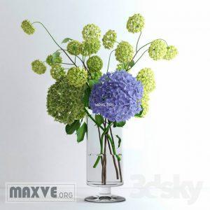 تحميل موديلات  425 Plant نبات