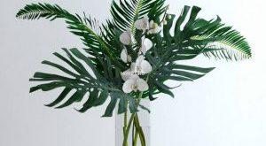 تحميل موديلات  429 Plant نبات