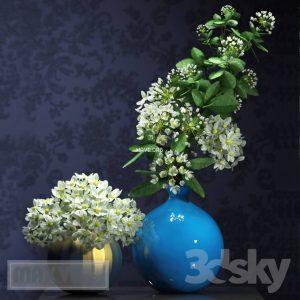 تحميل موديلات  439 Plant نبات