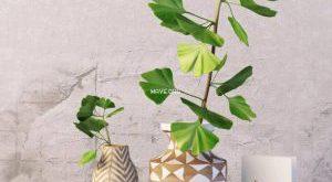 تحميل موديلات  440 Plant نبات