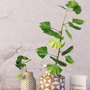 تحميل موديلات  441 Plant نبات