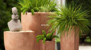 تحميل موديلات  454 Plant نبات