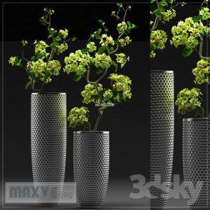 تحميل موديلات  466 Plant نبات