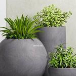 تحميل موديلات  473 Plant نبات